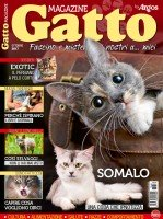 Copertina Gatto Magazine n.108