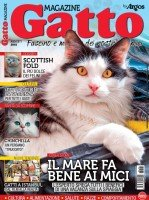 Copertina Gatto Magazine n.117