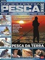Copertina Pesci & Pesca Mare n.14